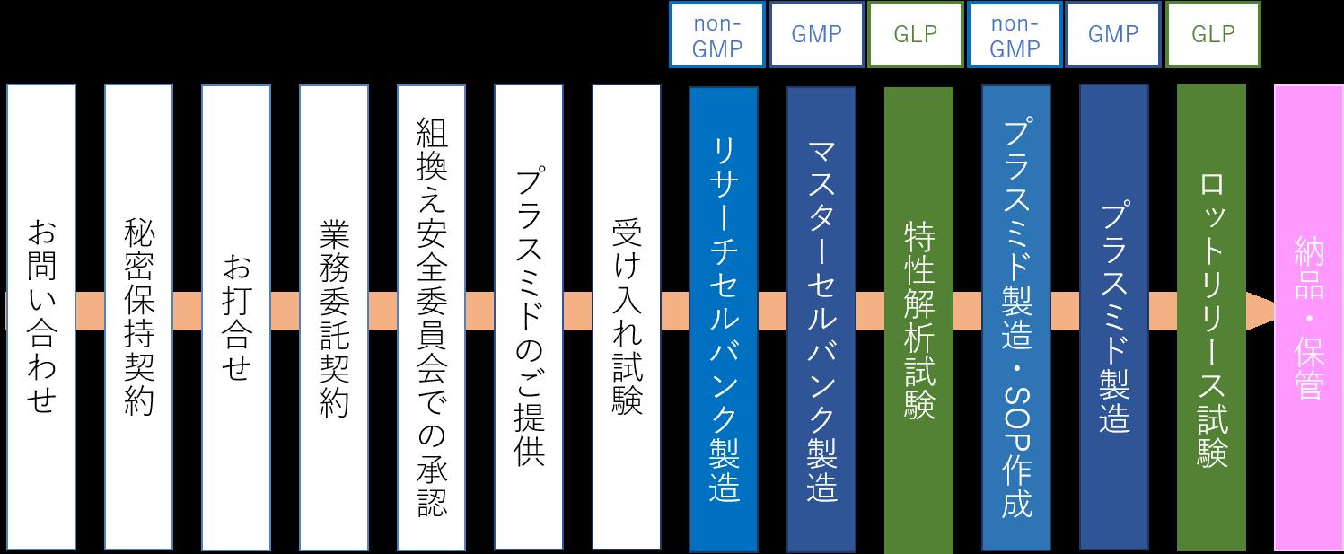 GMPプラスミド_タイムライン