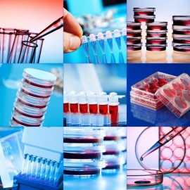 Genetics laboratory